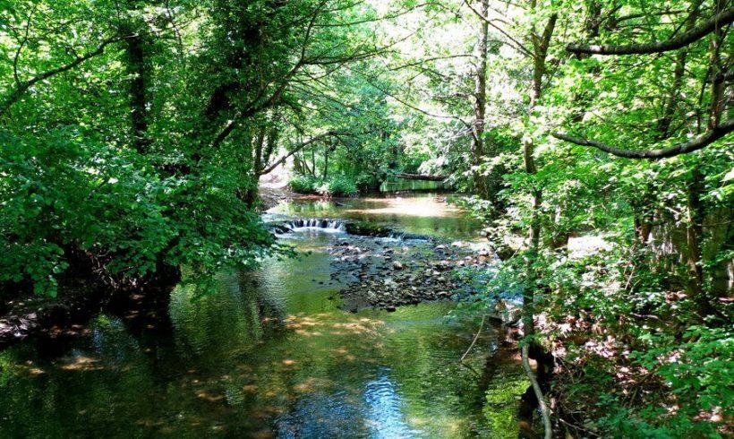 Natural landmark caves and springs near Mladejka river