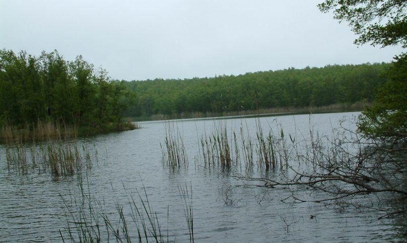 Езера Хамам-Педина